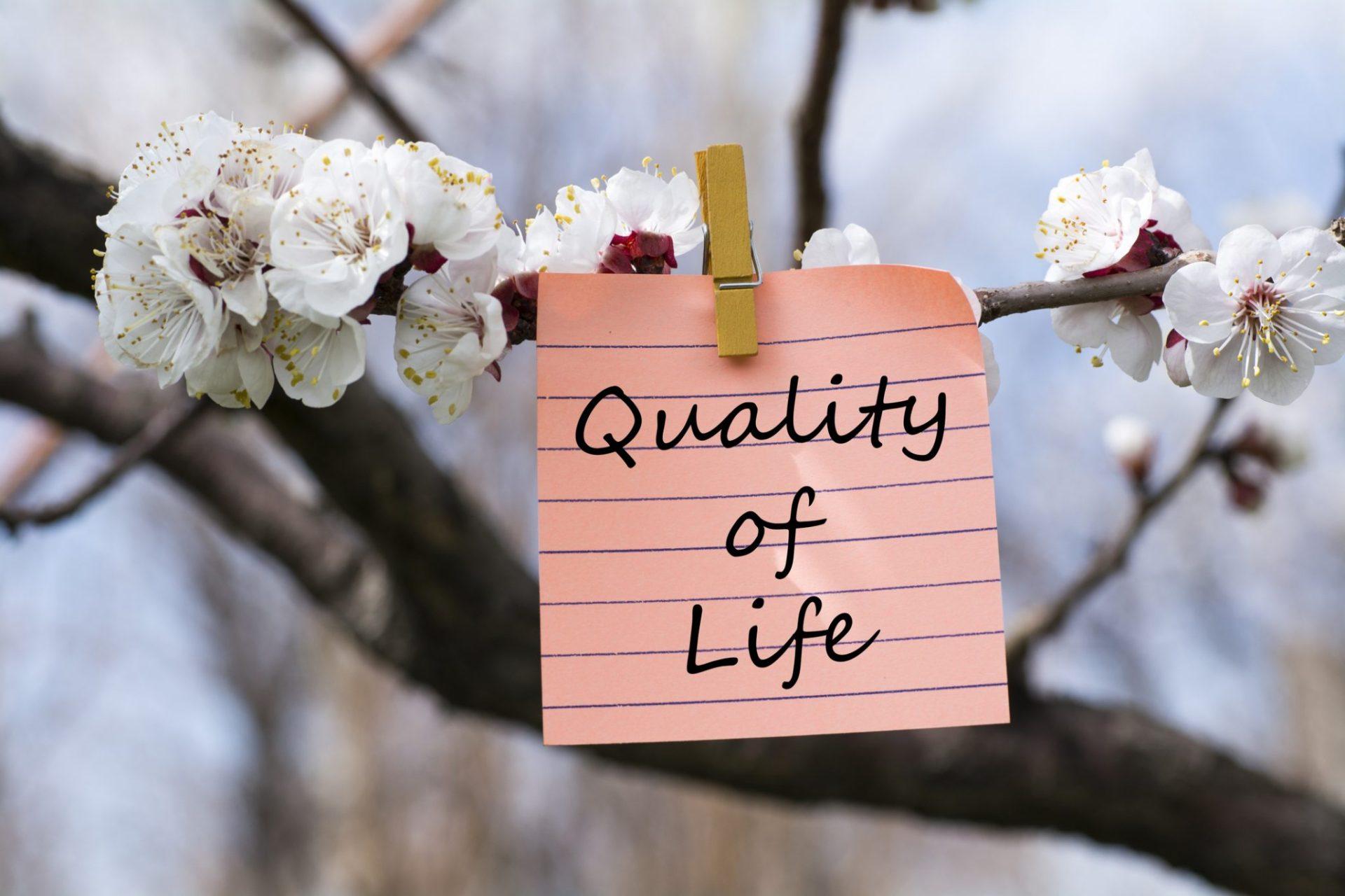 calitatea vieții
